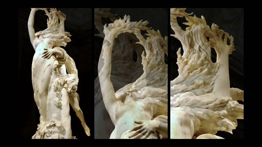 Apollo e Dafne, Bernini. Particolare della metamorfosi.